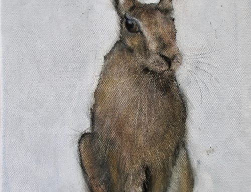 August Hare 2017