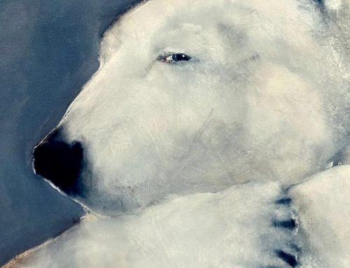 Polar Bear 2019
