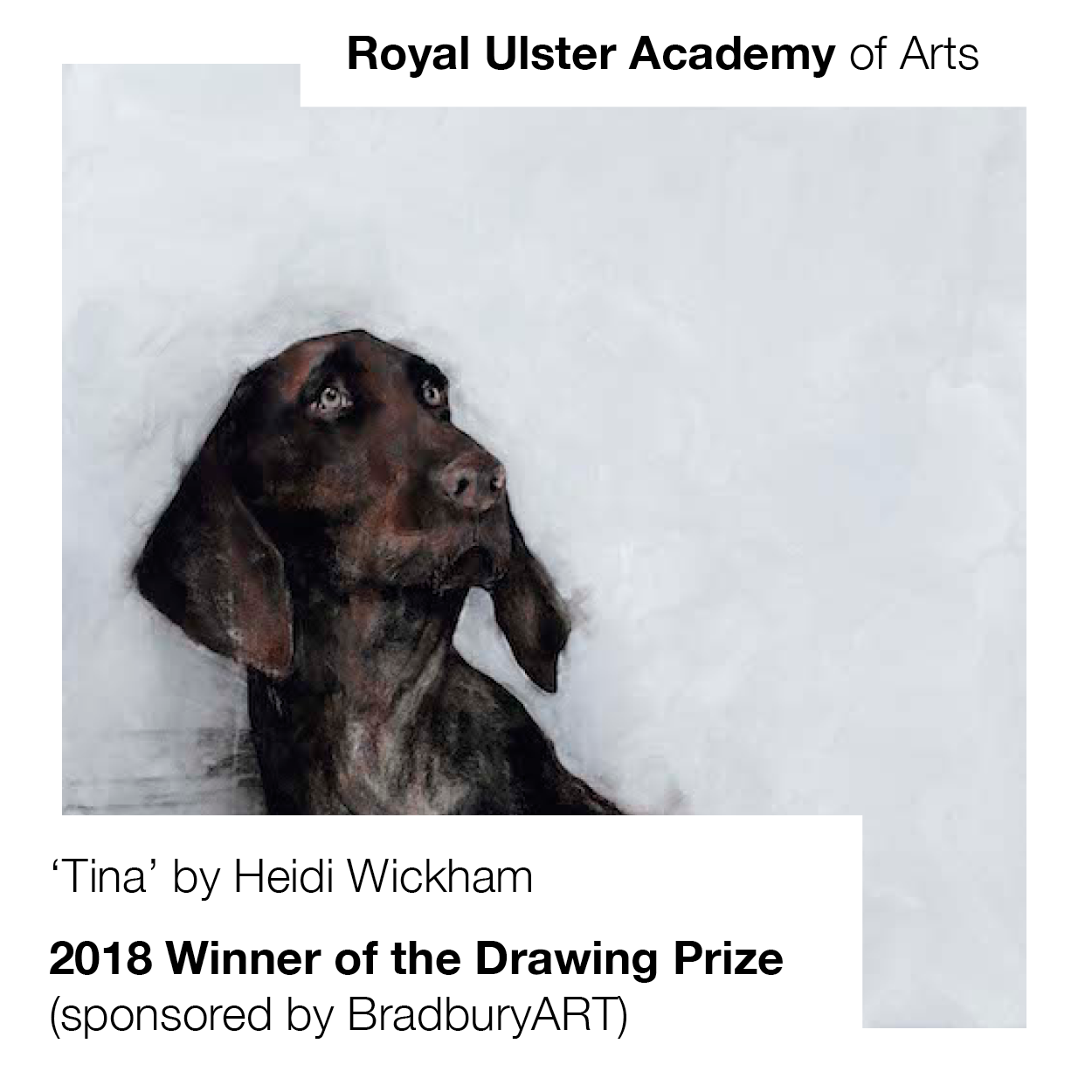 Award: Royal Ulster Academy Annual Exhibition Drawing Prize (sponsored by BradburyART)