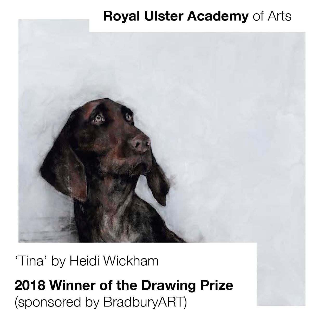 Award: Royal Ulster Academy Annual Exhibition Drawing Prize (sponsored by BradburyART)